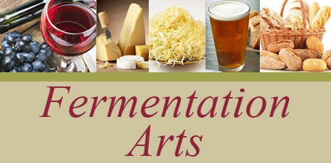 Fermentation image not sized for new site