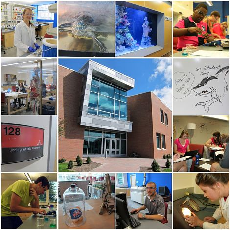 Science Center Collage